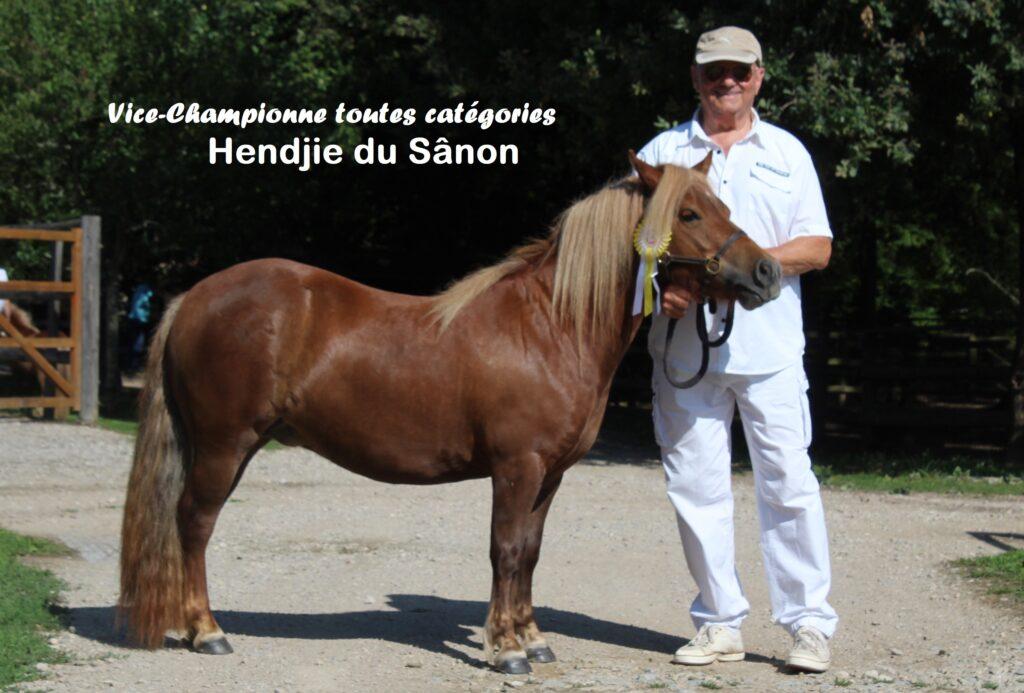 Hendjie Saillenard